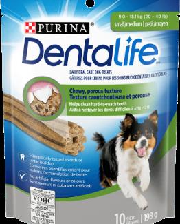 Dentalife-Small-Medium